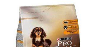 Pro Plan Duo Delice Small Breed Beef Köpek Maması