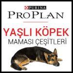 proplan-yasli-kopek-mamasi