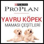 proplan-yavru-kopek-mamasi